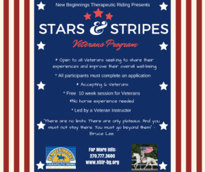 Stars and Stripes Flyer 2